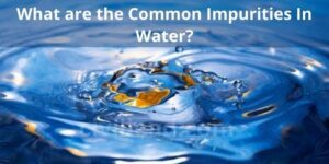 What are the common Impurities In Water?